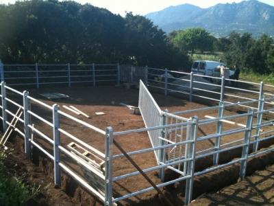 Passaggi obbligati per bovini for Autocatture per ovicaprini